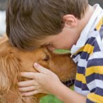 The Benefits of Owning Pets
