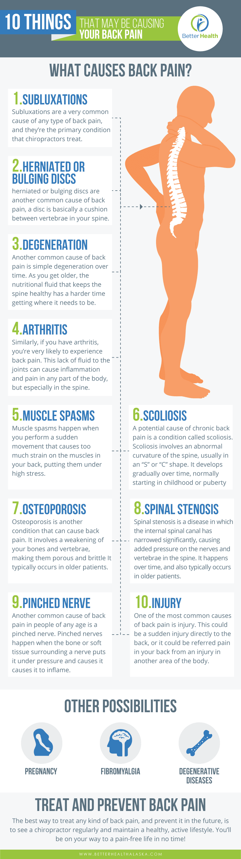 10 Things That May Be Causing Your Back Pain Infographic