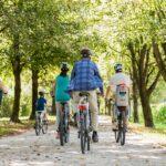 9 Biking Trails in Juneau That You Must Try! (Lovin' #3!)