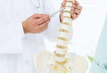 backbone-1